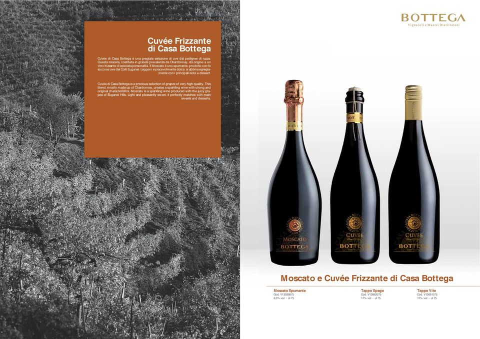 Leggero e piacevolmente dolce, si abbina egregiamente con i principali dolci e dessert. Cuvée di Casa Bottega is a precious selection of grapes of very high quality.