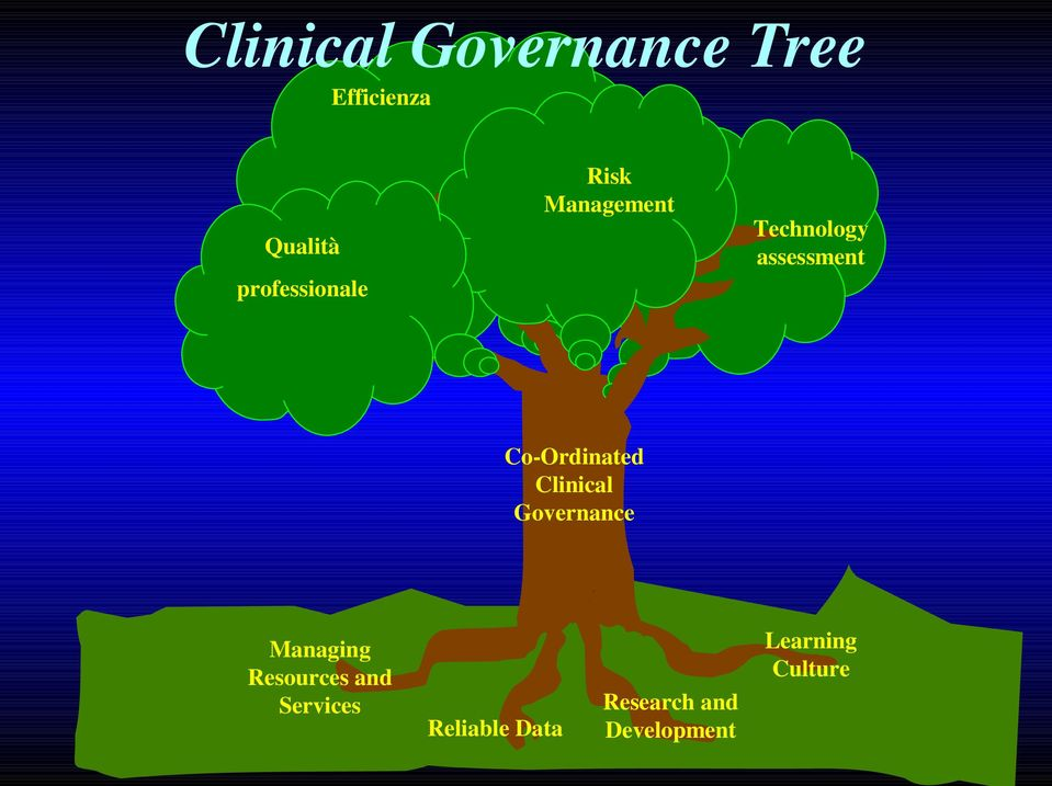 Co-Ordinated Clinical Governance Learning Culture