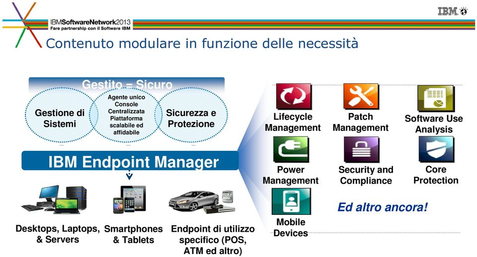 Software Use Analysis IBM Endpoint Manager Power Management Security and Compliance Core Protection Ed altro