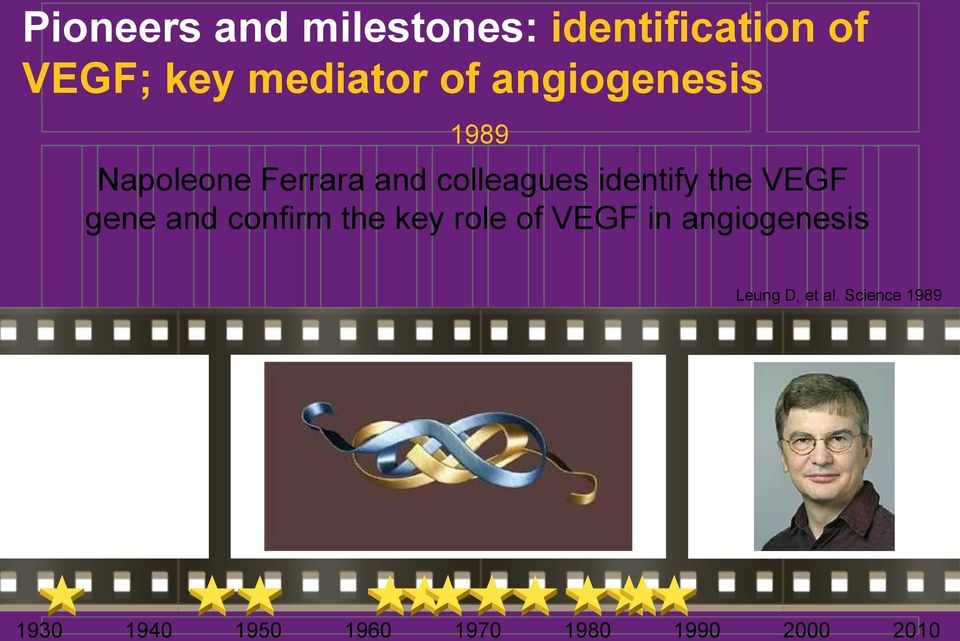 VEGF gene and confirm the key role of VEGF in angiogenesis Leung