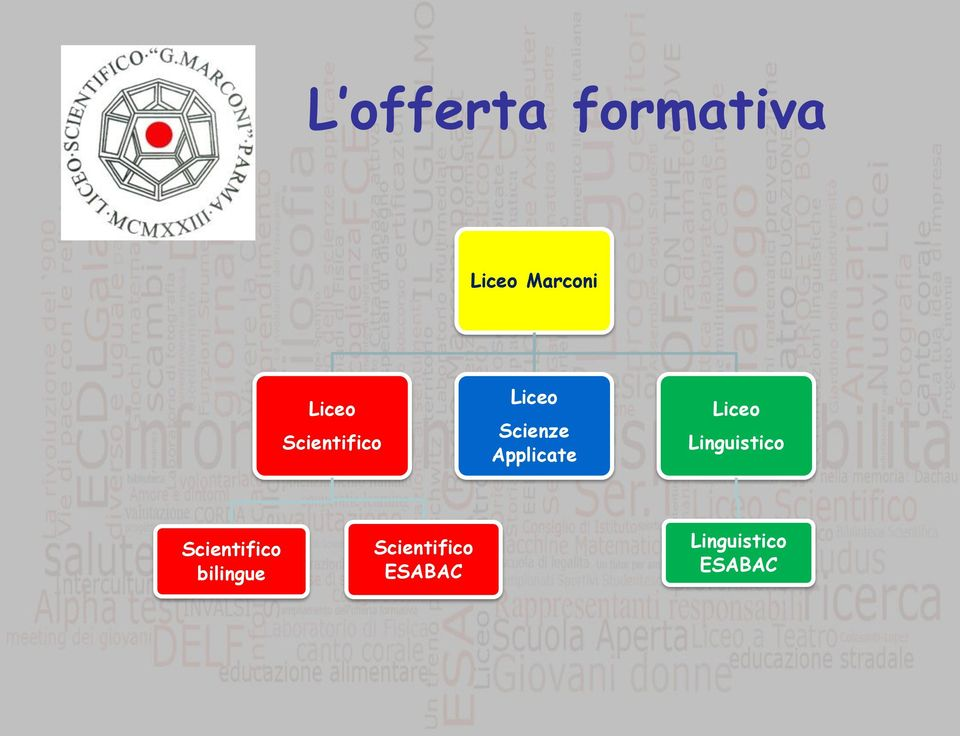 Applicate Liceo Linguistico