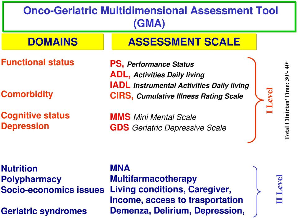 Mini Mental Scale GDS Geriatric Depressive Scale I Level Total Clinician Time: 30¹- 40¹ Nutrition Polypharmacy Socio-economics issues