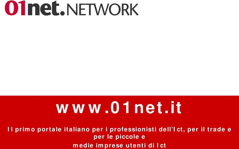 i professionisti dell Ict, per