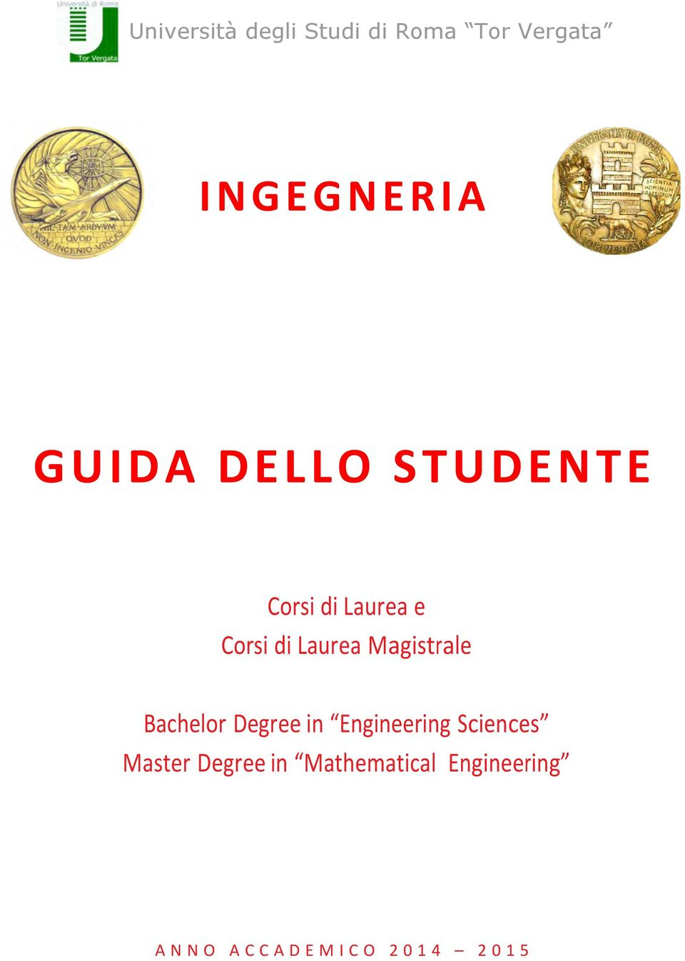 Magistrale Bachelor Degree in Engineering Sciences