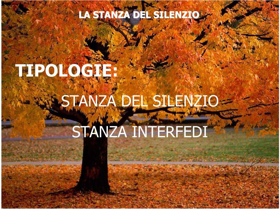 TIPOLOGIE: STANZA
