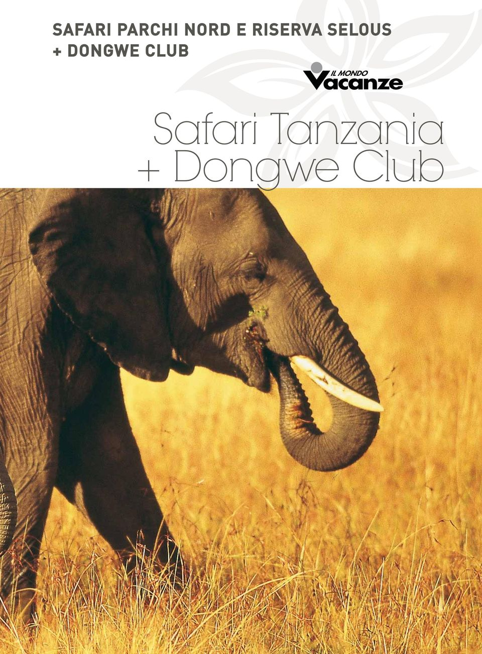 DONGWE CLUB Safari