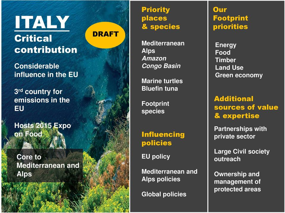 Influencing policies EU policy Mediterranean and Alps policies Global policies Our Footprint priorities Energy Food Timber Land Use Green