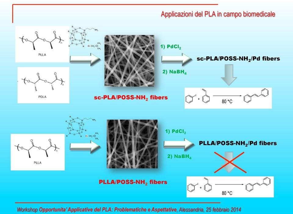 CH 3 1) PdCl 2 PLLA/PSS-NH 2 /Pd fibers 2) NaBH 4 PLLA/PSS-NH 2 fibers 80 C Workshop