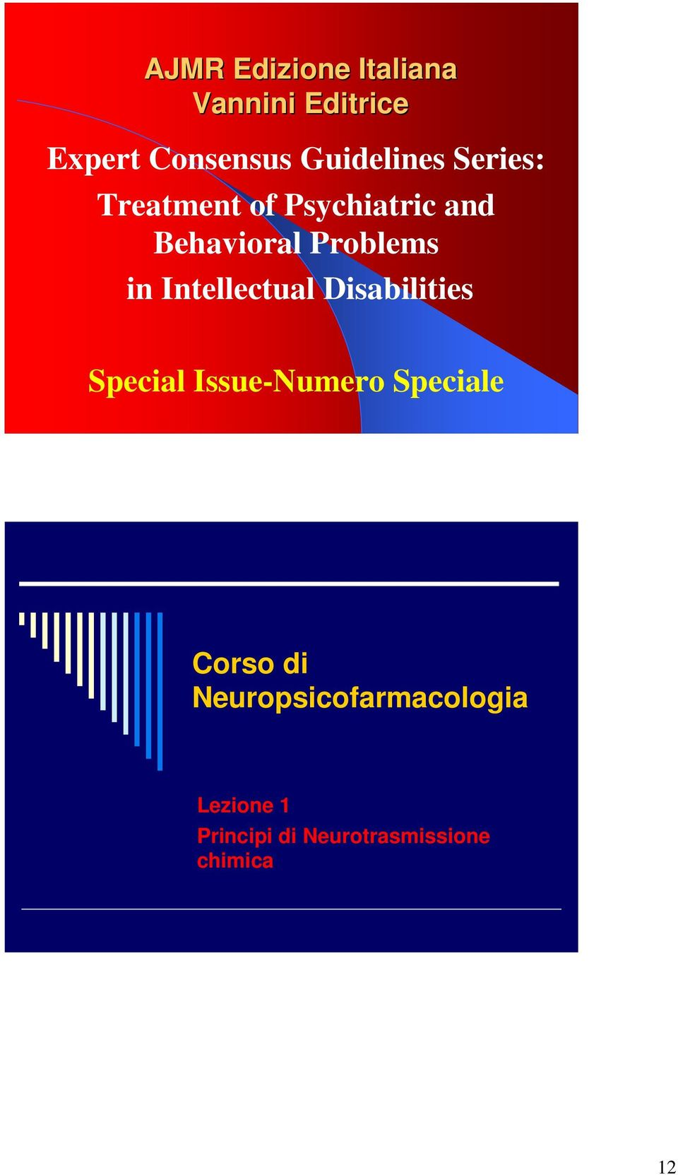 Problems in Intellectual Disabilities Special Issue-Numero