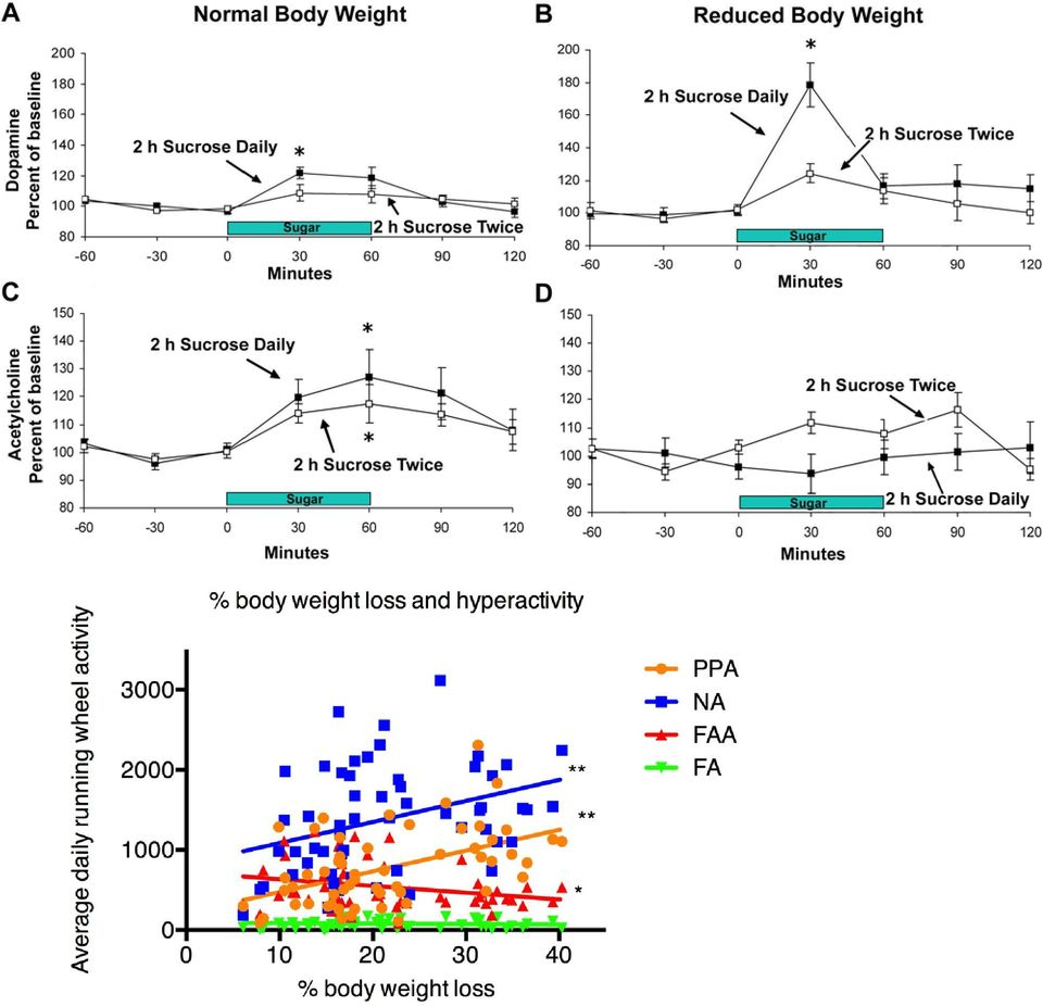 (A) DA is released in response to drinking 10% sucrose on day 21 of access at a normal body weight, and (B) this release is enhanced (to 179% of baseline) when animals binge on sucrose at a reduced