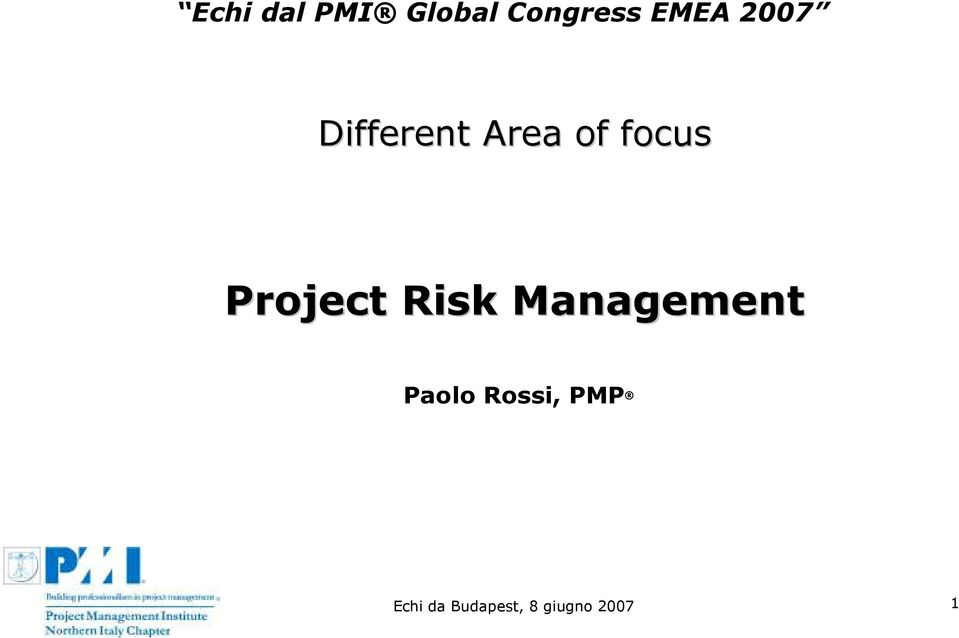 Project Risk Management Paolo