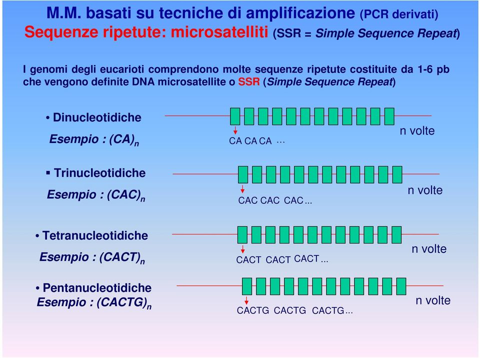 (Simple Sequence Repeat) Dinucleotidiche Esempio : (CA) n CA CA CA n volte Trinucleotidiche Esempio : (CAC) n CAC CAC CAC.