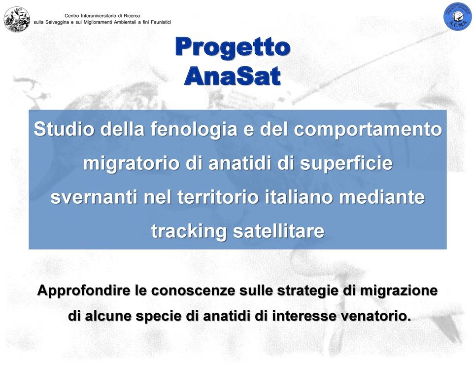 italiano mediante tracking satellitare Approfondire le conoscenze