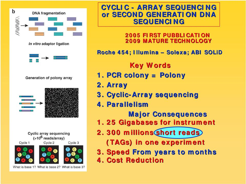Array 3. Cyclic-Array sequencing 4. Parallelism Major Consequences 1.
