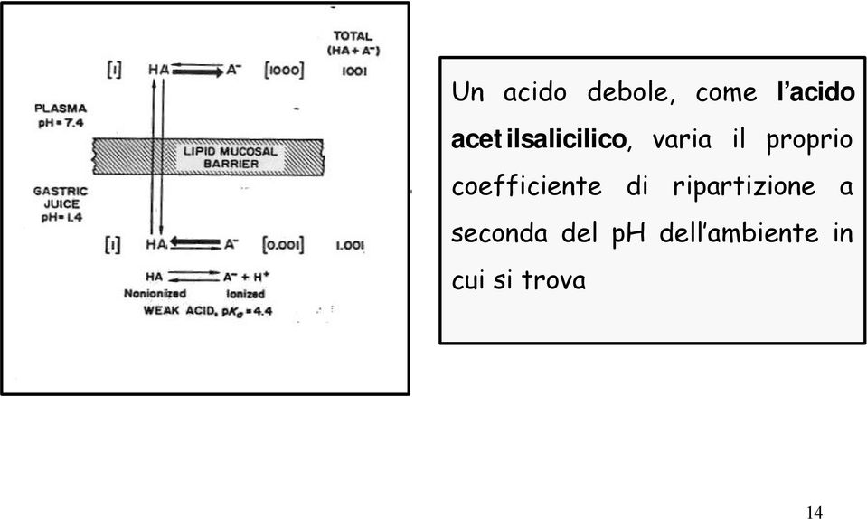 coefficiente di ripartizione a