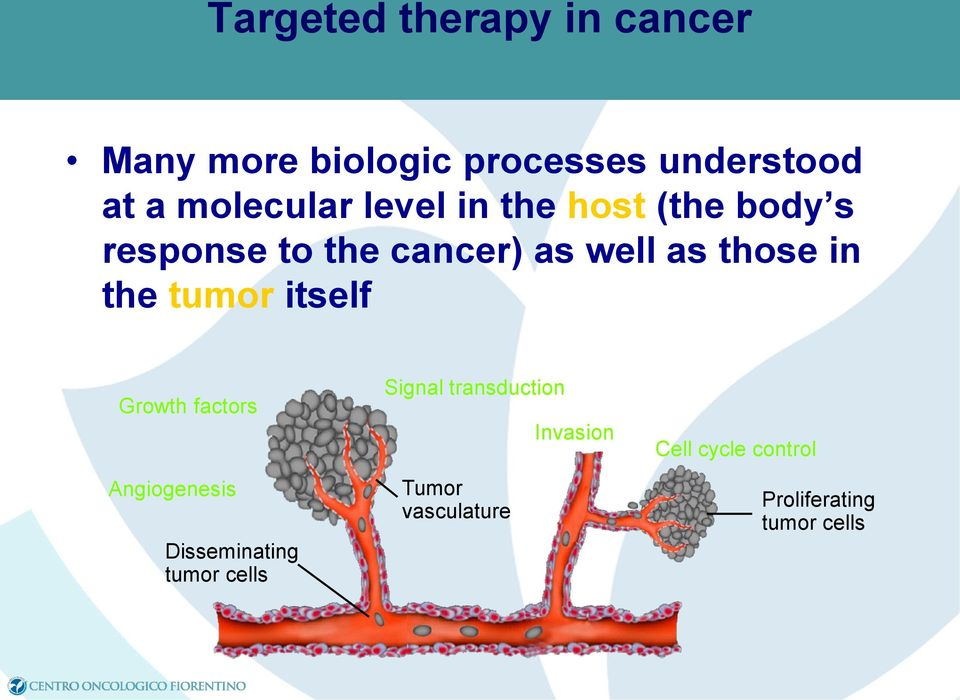 those in the tumor itself Growth factors Angiogenesis Disseminating tumor cells