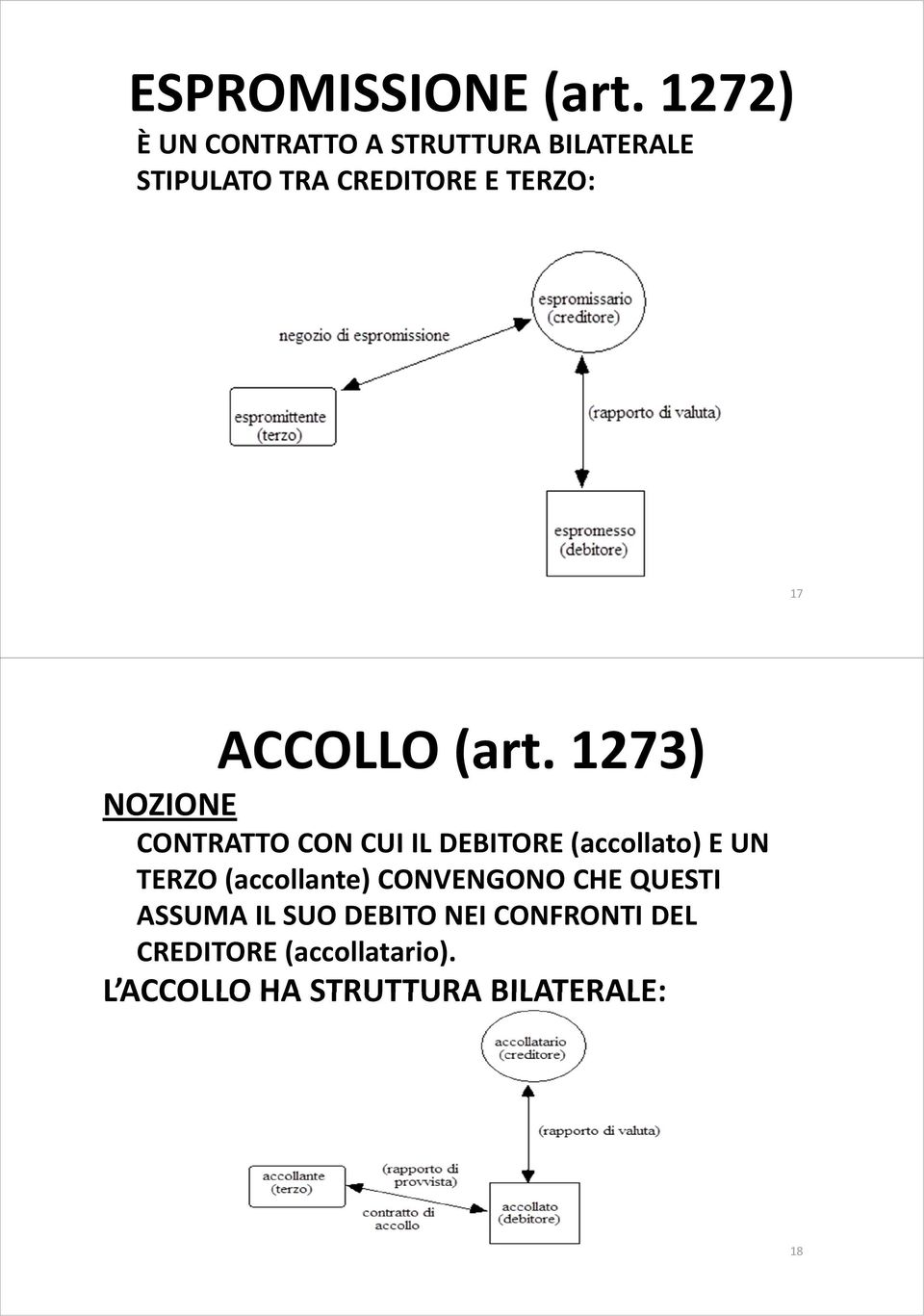 ACCOLLO (art.