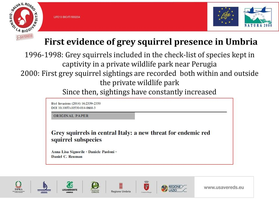park near Perugia 2000: First grey squirrel sightings are recorded both within
