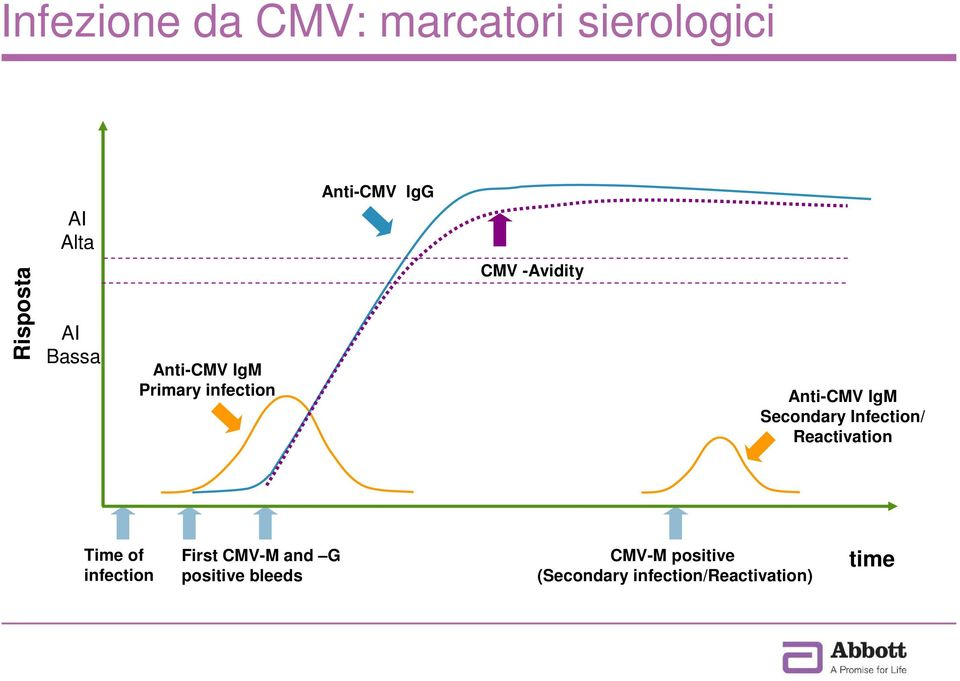 Anti-CMV IgM Secondary Infection/ Reactivation Time of infection