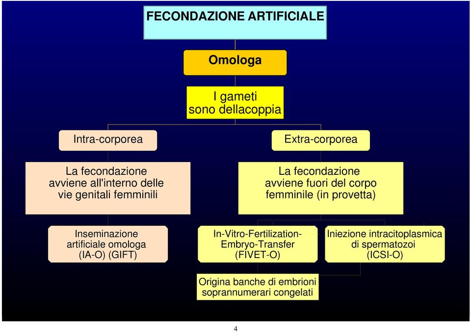 provetta) Inseminazione artificiale omologa (IA-O) (GIFT) In-Vitro-Fertilization- Embryo-Transfer