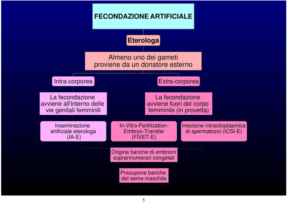 provetta) Inseminazione artificiale eterologa (IA-E) In-Vitro-Fertilization- Embryo-Transfer (FIVET-E) Iniezione