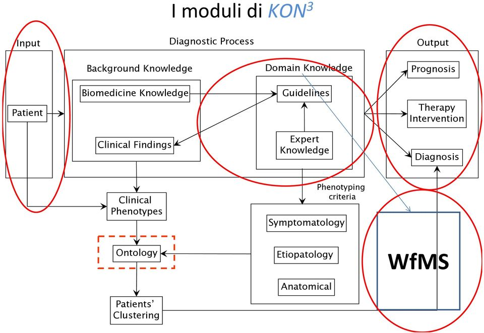 Knowledge Prognosis Therapy Intervention Diagnosis Clinical Phenotypes