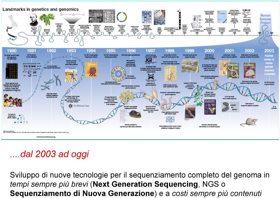 più brevi (Next Generation Sequencing, NGS o