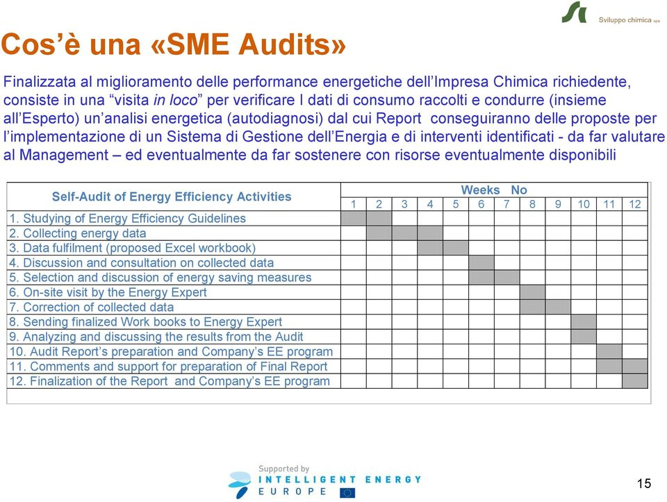 far valutare al Management ed eventualmente da far sostenere con risorse eventualmente disponibili Self-Audit of Energy Efficiency Activities 1. Studying of Energy Efficiency Guidelines 2.