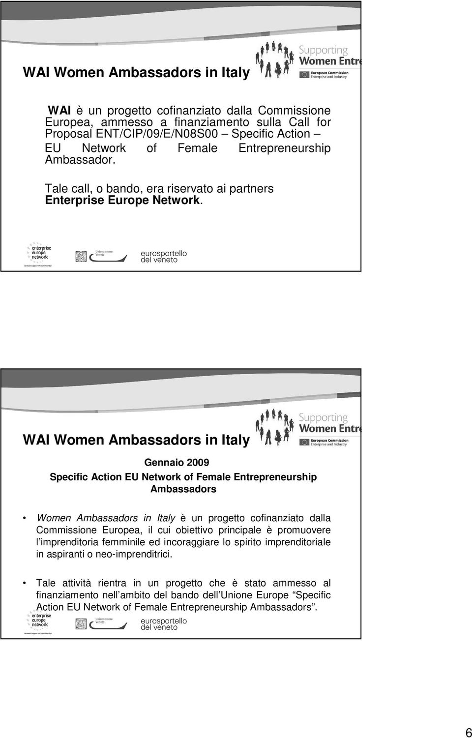 WAI Women Ambassadors in Italy Gennaio 2009 Specific Action EU Network of Female Entrepreneurship Ambassadors Women Ambassadors in Italy è un progetto cofinanziato dalla Commissione Europea, il cui