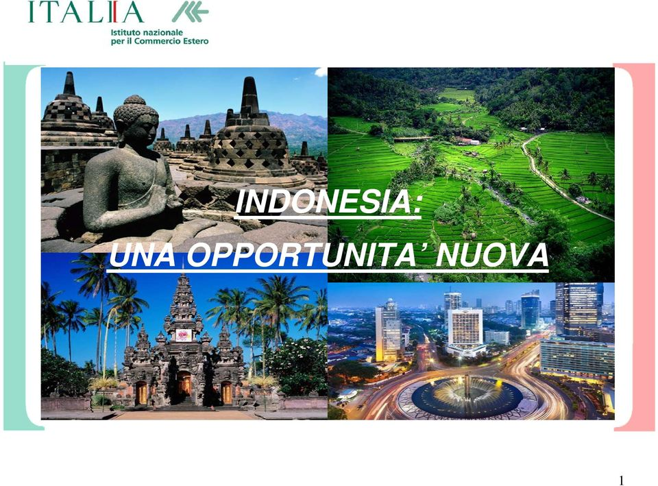 INDONESIA NEW