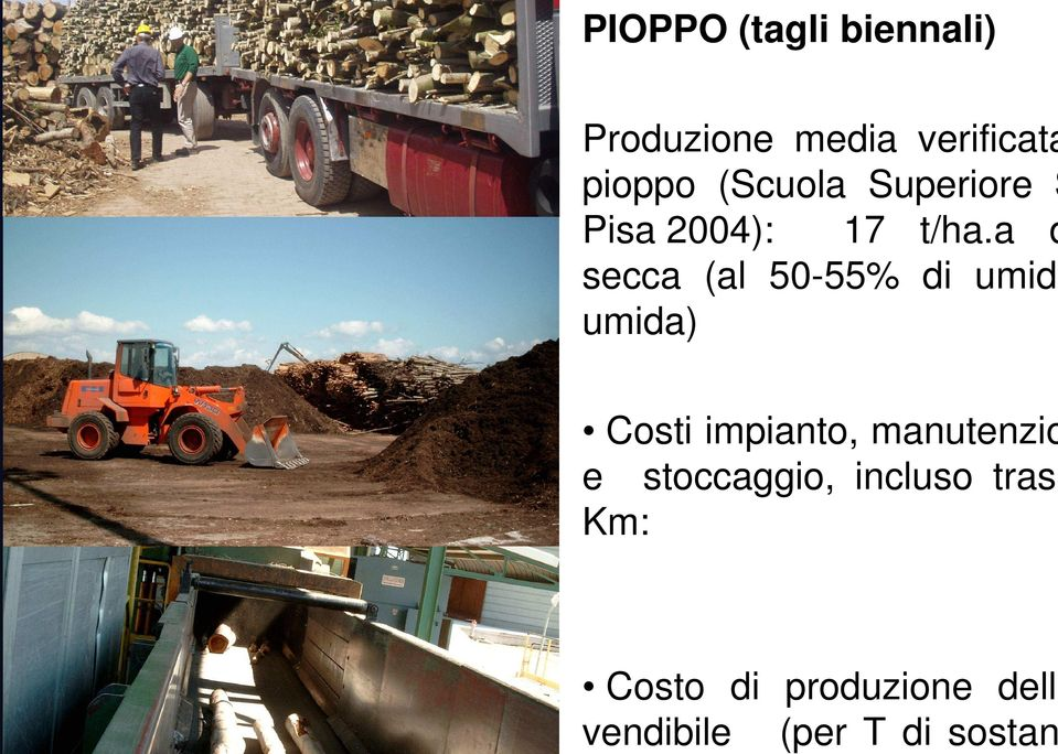Superiore S Pisa 2004): 17 t/ha.