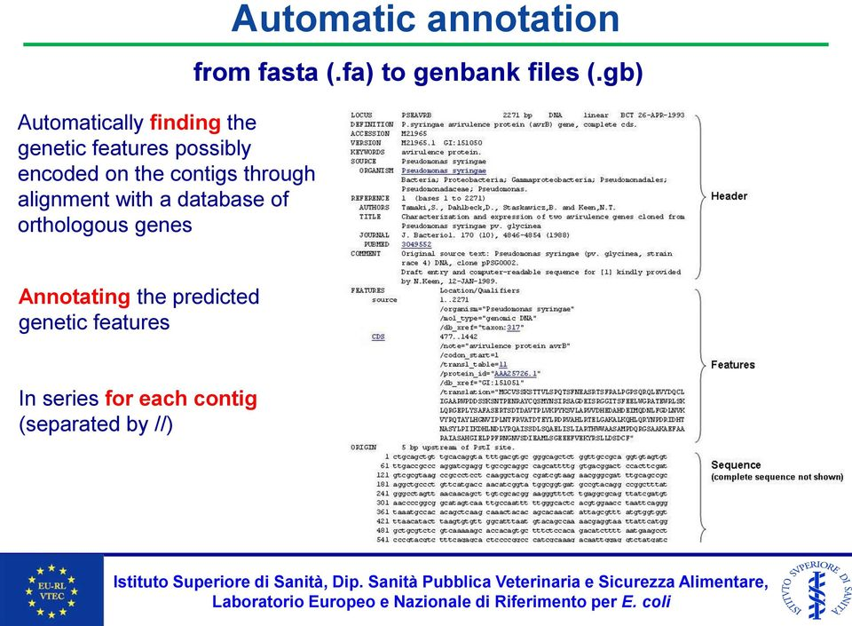 Automatic annotation from fasta (.fa) to genbank files (.