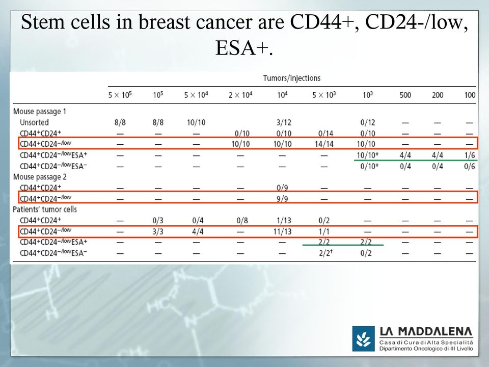 are CD44+,