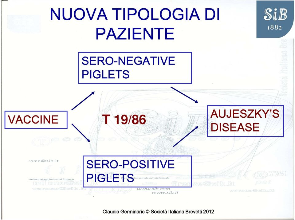 PIGLETS VACCINE T 19/86