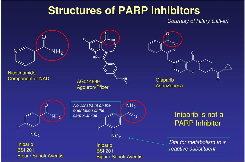 orientation of the carboxamide I NH 2 O Iniparib is not a PARP Inhibitor NO 2 Iniparib BSI 201 Bipar /