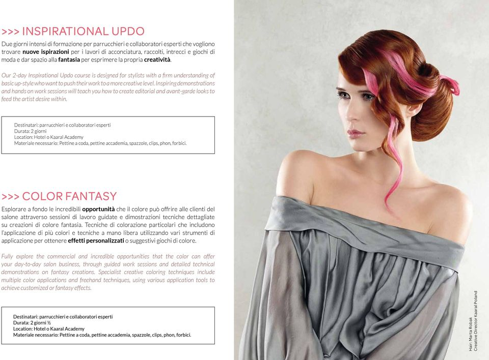 Our 2-day Inspirational Updo course is designed for stylists with a firm understanding of basic up-style who want to push their work to a more creative level.