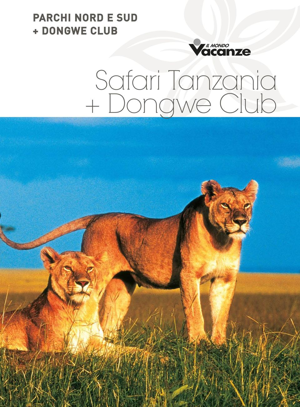 club Safari