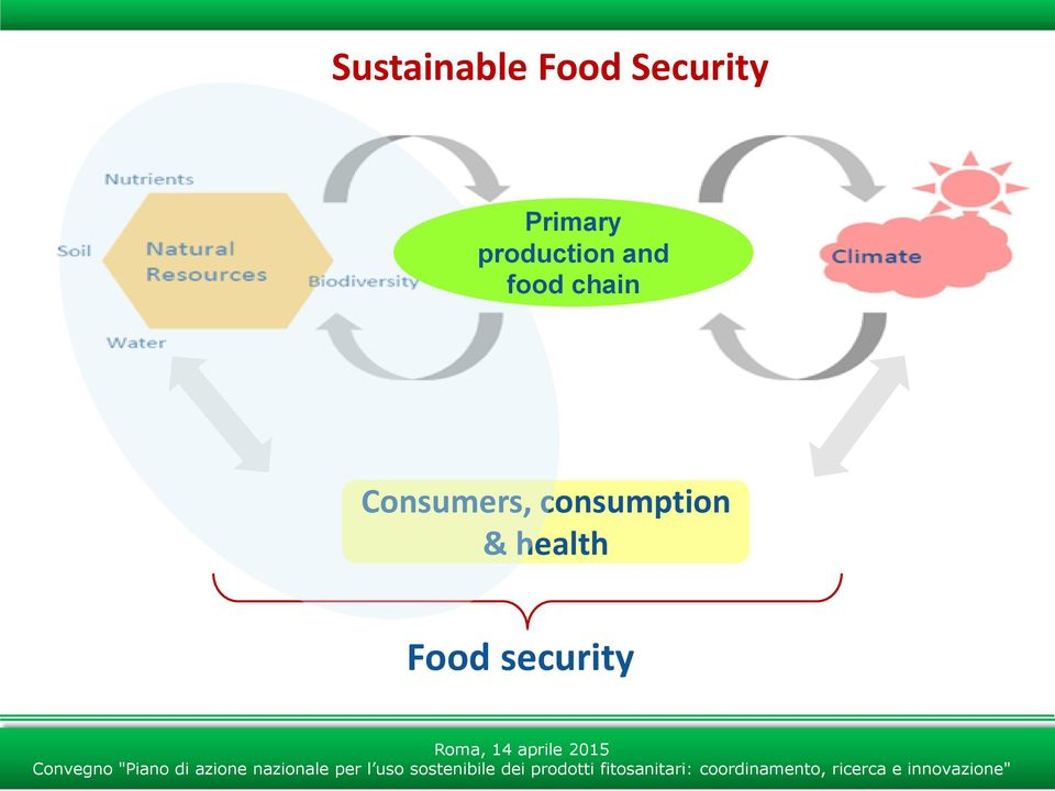 food chain Consumers,
