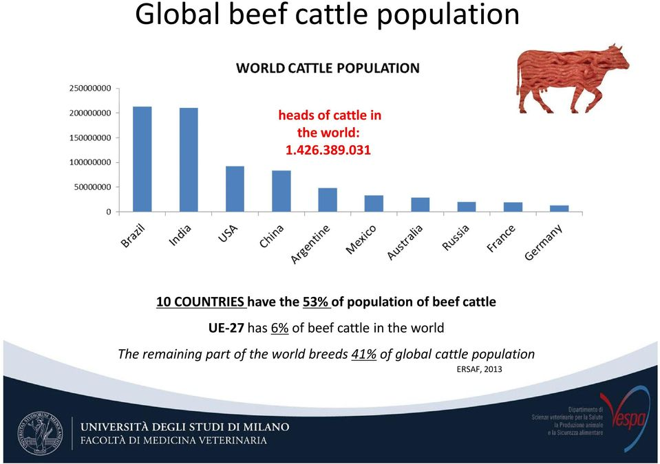 031 10 COUNTRIES have the 53% of population of beef cattle