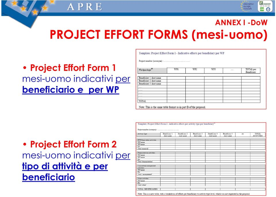 beneficiario e per WP Project Effort Form 2