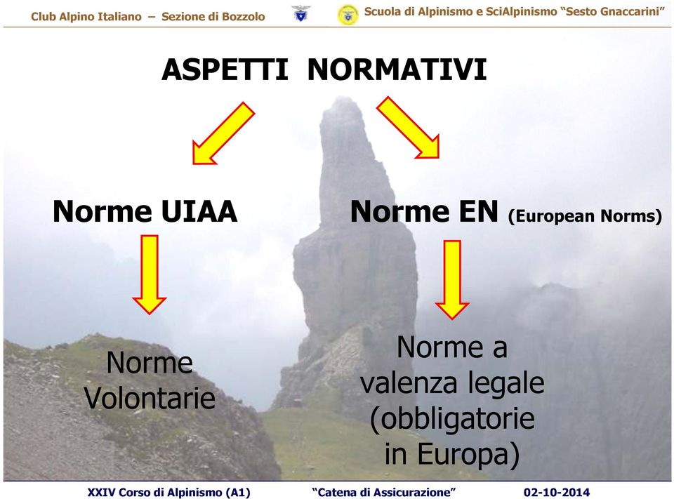 Norme Volontarie Norme a