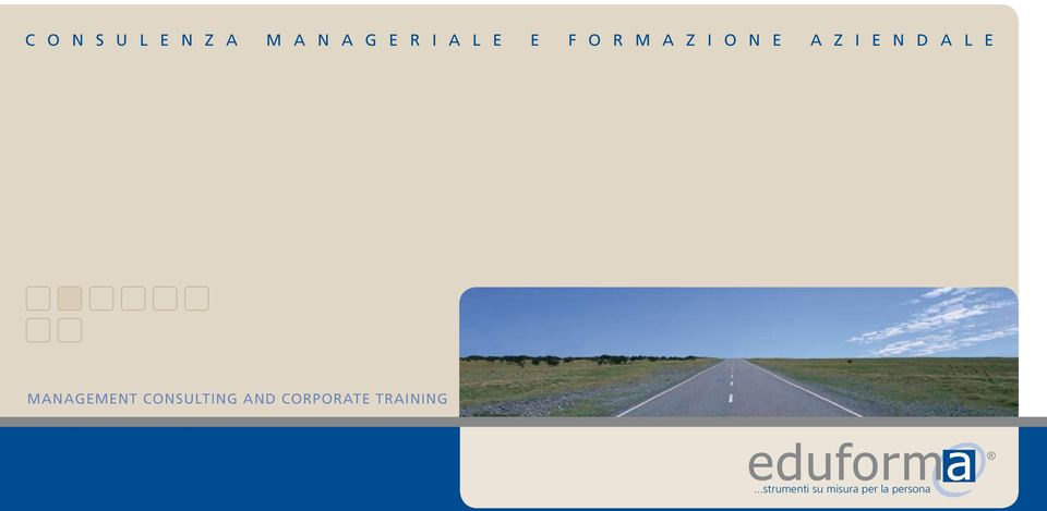 e MANAGEMENT CONSULTING AND CORPORATE