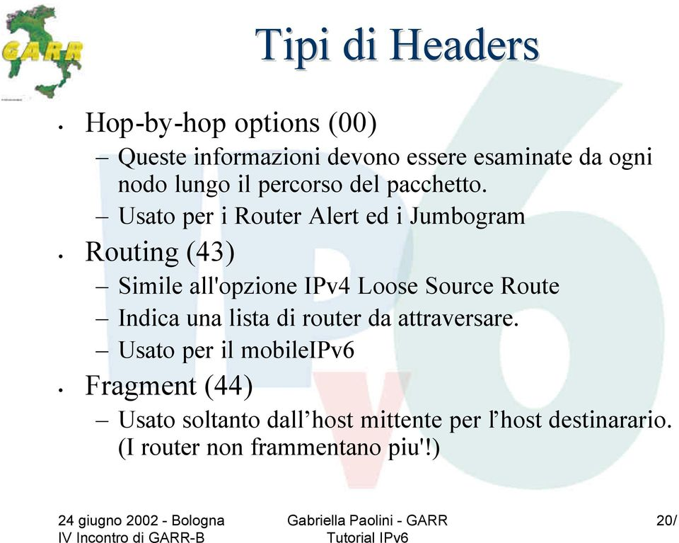 Usato per i Router Alert ed i Jumbogram Routing (43) Simile all'opzione IPv4 Loose Source Route